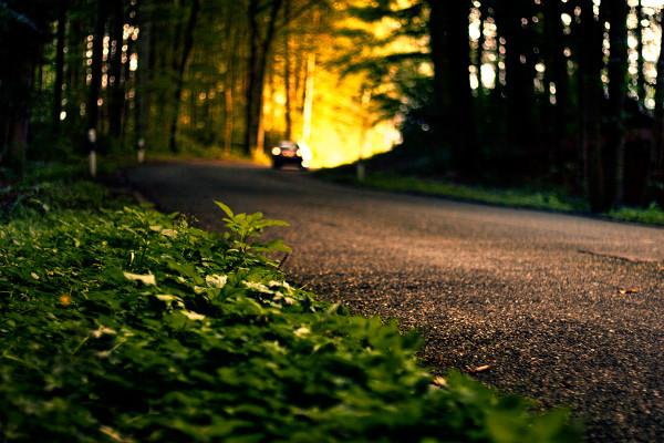 真福八端成功生命的八條道路(一)