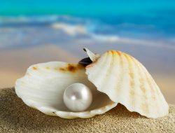 包容,愛情的珍珠