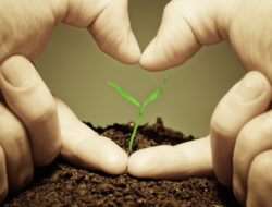 5-Ways-to-Optimize-Your-Charitable-Giving-David-DeWolf