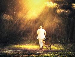 negeer-die-mensen-die-jouw-woorden-niet-waard-zijn-en-concentreer-op-ons-eigen-leven-easy-branches