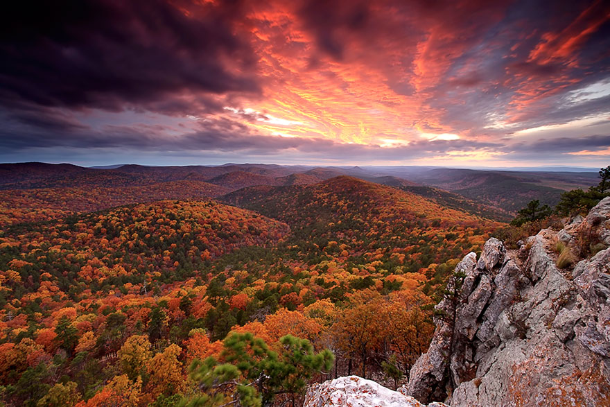american-nature-photography-exhibit-wilderness-forever-smithsonian-24