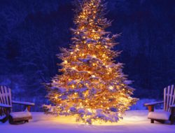 christmas-tree-lights-white