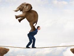 Adversity-Large